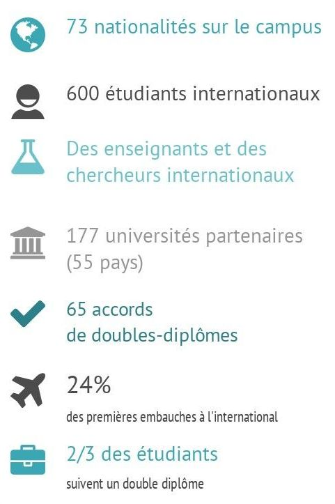 infogr_etudiants_international_rogne